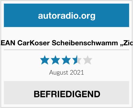 "POLYCLEAN CarKoser Scheibenschwamm ""Zickentaxi"" Test"