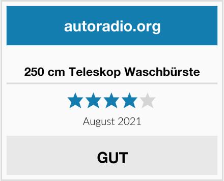250 cm Teleskop Waschbürste Test