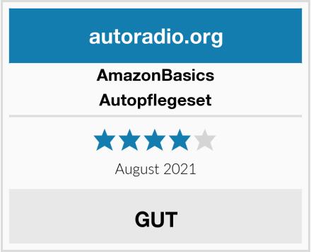 AmazonBasics Autopflegeset Test